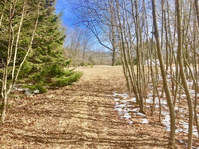 Lot 1 Hill Road, Manistee Twp, MI 49660 (#65020015414) :: Robert E Smith Realty