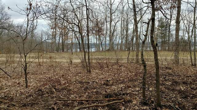 Lot 2 42nd St., Valley Twp, MI 49010 (#65020051510) :: The Merrie Johnson Team