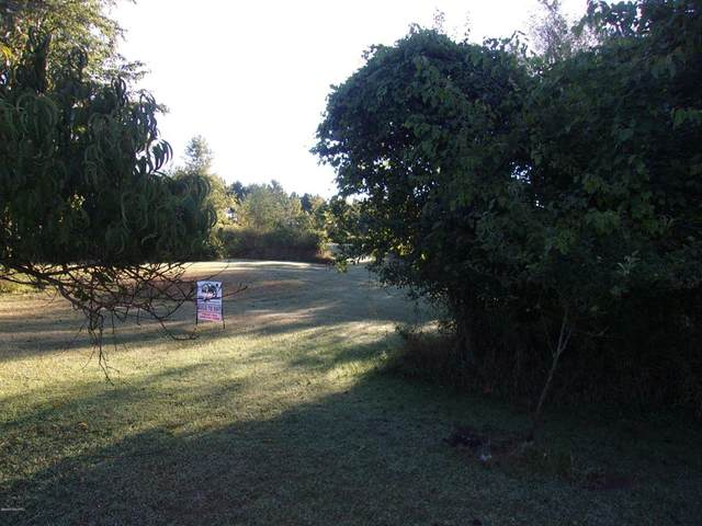 6380 Stevens Road, Hope Twp, MI 49046 (#65020036161) :: The Alex Nugent Team | Real Estate One