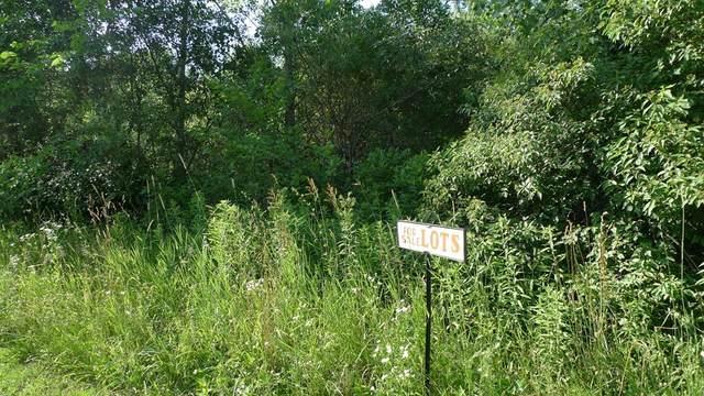 261 E Maple Street NE, Cedar Springs, MI 49319 (#65020041579) :: Duneske Real Estate Advisors