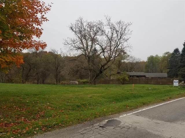 Peck Lake Road, Boston Twp, MI 48881 (#65020044080) :: The Alex Nugent Team | Real Estate One