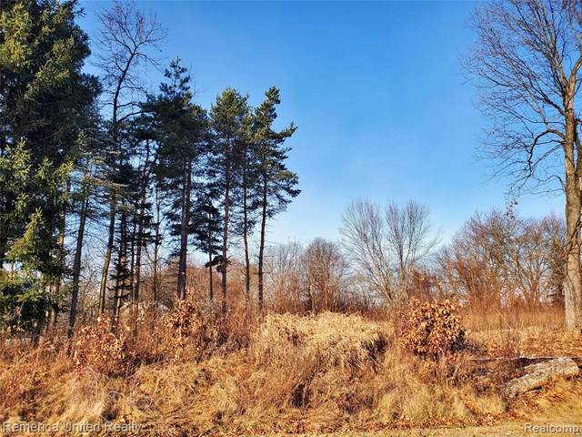 LOT 2 Oak Forest Drive, Green Oak Twp, MI 48178 (#2200102217) :: The Merrie Johnson Team