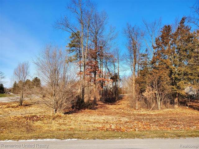 Lot 4 Oak Shore Drive, Green Oak Twp, MI 48178 (#2200102232) :: The Merrie Johnson Team