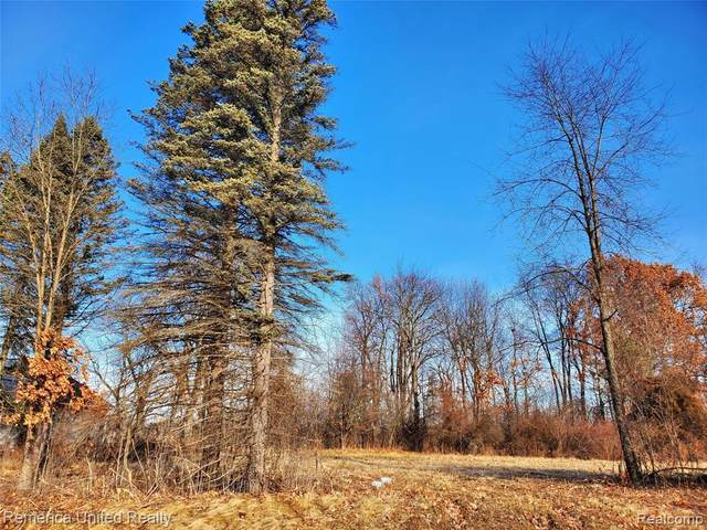 LOT 7 Oak Shore Drive, Green Oak Twp, MI 48178 (#2200102239) :: The Merrie Johnson Team