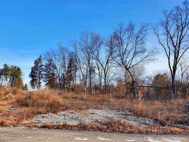 LOT 21 Oak Forest Drive, Green Oak Twp, MI 48178 (#2200102244) :: The Merrie Johnson Team