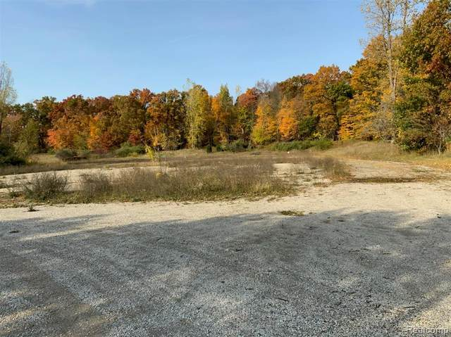 3175 Grange Hall Road, Holly Twp, MI 48442 (#2200102302) :: Duneske Real Estate Advisors