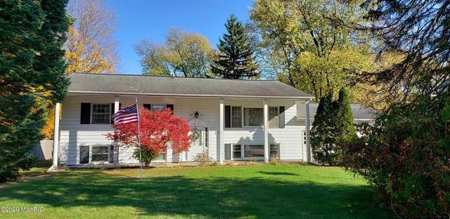 2849 E Hanley Road, Shoreham Vlg, MI 49085 (#65020050654) :: GK Real Estate Team