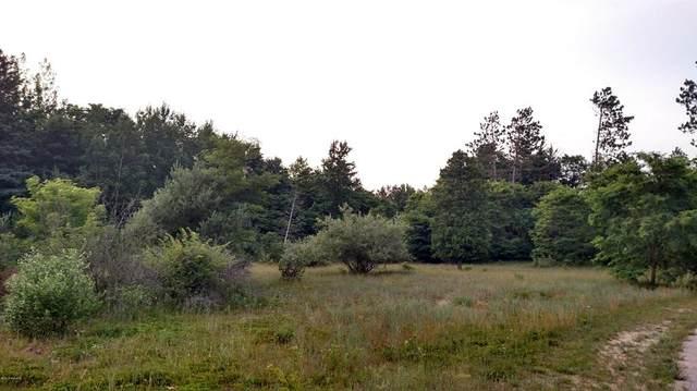 Brookridge Road, Amber Twp, MI 49431 (#67020051668) :: Real Estate For A CAUSE