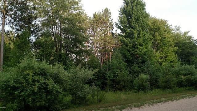 N Pine Ridge Drive, Amber Twp, MI 49431 (#67020051681) :: Real Estate For A CAUSE