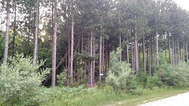 N Pine Ridge Drive, Amber Twp, MI 49431 (#67020051677) :: Real Estate For A CAUSE