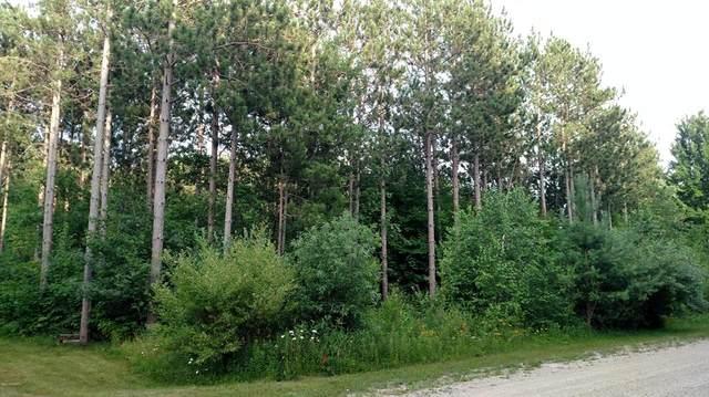 N Pine Ridge Drive, Amber Twp, MI 49431 (#67020051680) :: The Merrie Johnson Team