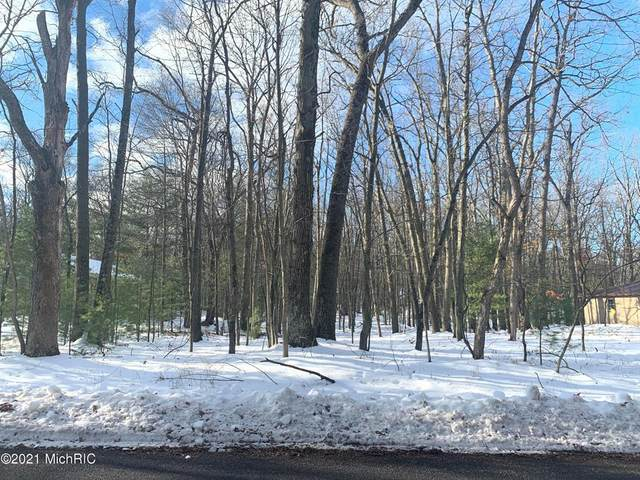 Lot 127 Wayne Road, Pentwater Twp, MI 49449 (#67021000636) :: The Alex Nugent Team | Real Estate One