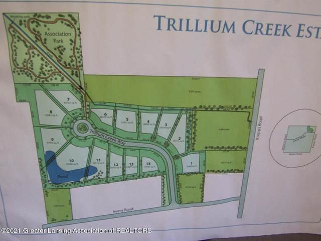 2866 Trillium Creek Way, Bingham, MI 48879 (#630000252396) :: GK Real Estate Team