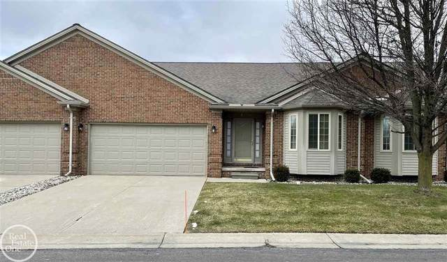 50445 Kayla, New Baltimore, MI 48047 (#58050031873) :: The Alex Nugent Team | Real Estate One