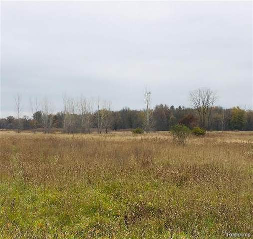 PARCEL A B Sherwood Road, Conway Twp, MI 48836 (#2210002436) :: The Mulvihill Group
