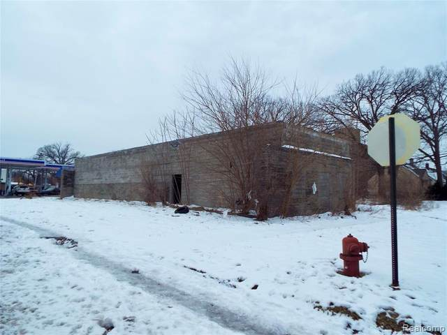 1439 E Outer Drive, Detroit, MI 48234 (MLS #2210003574) :: The Toth Team