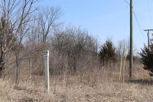 0000 Currie Road, Salem Twp, MI 48167 (#2210003751) :: The Mulvihill Group