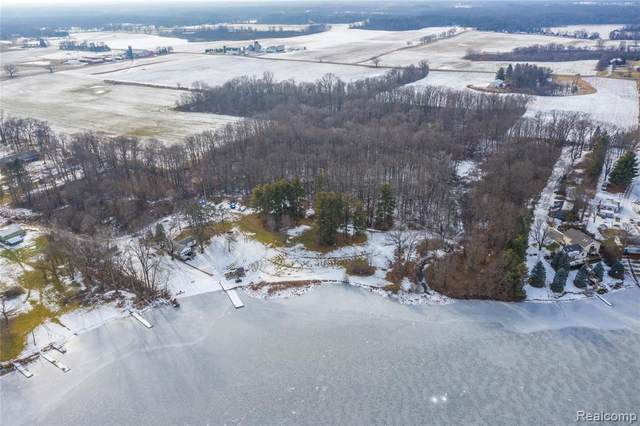 6407 Bennett Lake Road, Deerfield Twp, MI 48430 (#2210003752) :: GK Real Estate Team
