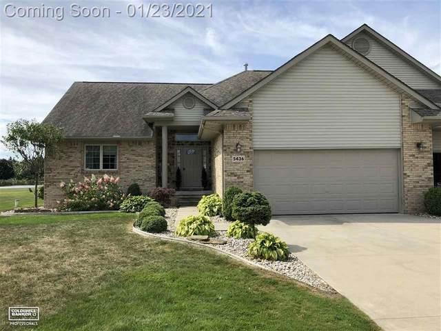 5436 Babcock Rd, Lexington Twp, MI 48450 (#58050032411) :: The Alex Nugent Team | Real Estate One