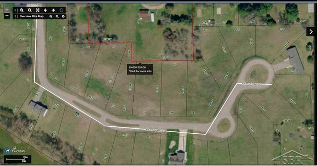00 Adam Ridge Drive, Sebewaing, MI 48759 (#61050032498) :: The Mulvihill Group
