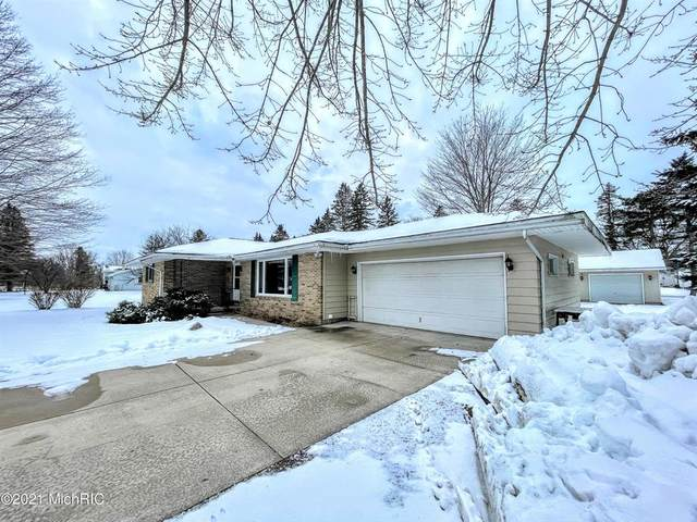 18165 205th Avenue, Green Twp, MI 49307 (#72021001814) :: The Alex Nugent Team | Real Estate One