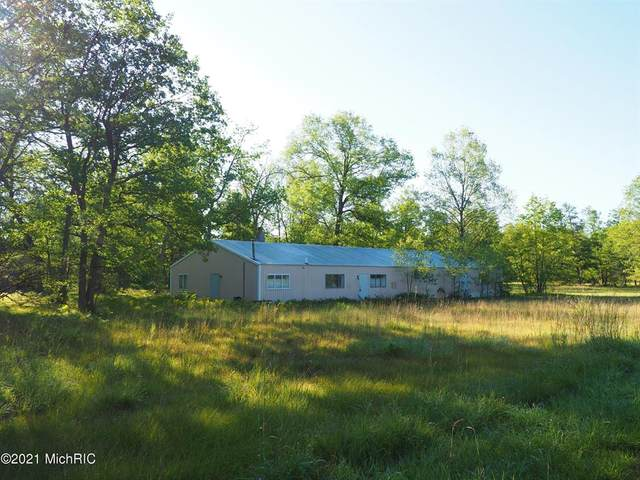 641 N Warfield Road, Dickson Twp, MI 49689 (#67021001882) :: The Merrie Johnson Team