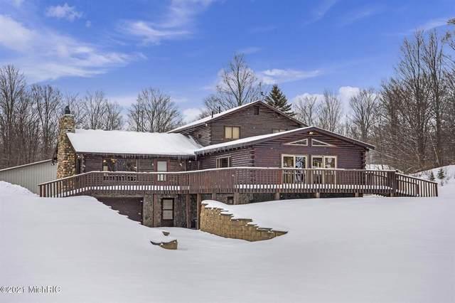 2445 N Mt. Tom Road, Mio, MI 48647 (#71021001895) :: The Alex Nugent Team   Real Estate One
