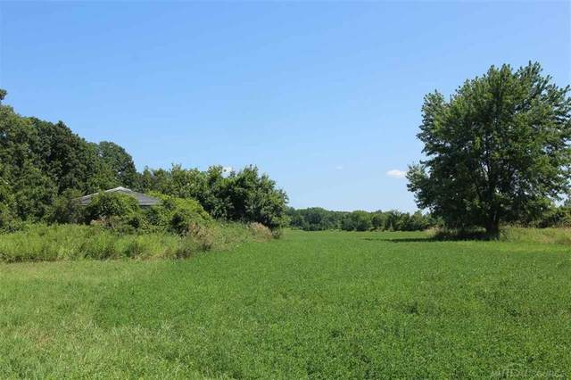 0000 Farley, Almont, MI 48003 (#58050032656) :: Robert E Smith Realty