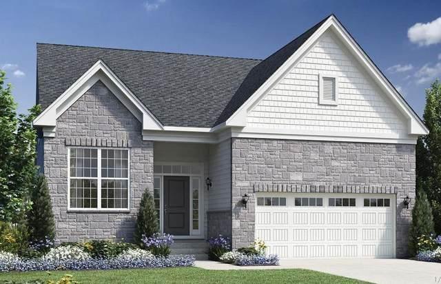 6292 N Trailwoods Drive, Scio Township, MI 48103 (MLS #543278448) :: The John Wentworth Group