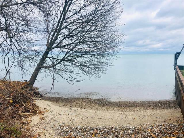0000 Lakeshore Rd, Lexington Twp, MI 48450 (#2210005167) :: GK Real Estate Team
