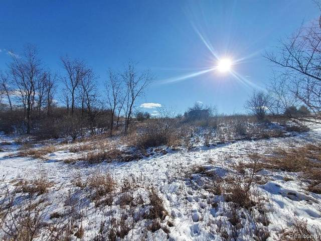 A-11-B Squires Pl, Oceola Twp, MI 48855 (#2210005722) :: The Merrie Johnson Team