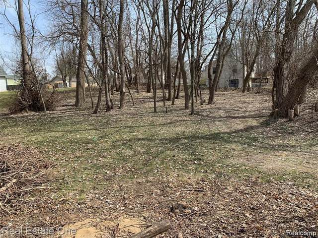 00 Cooley Lake Road, White Lake Twp, MI 48386 (#2210006154) :: Real Estate For A CAUSE