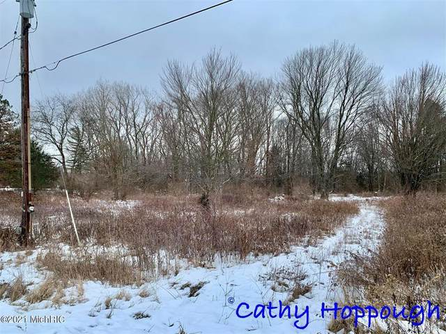 0 Prairie View Lot A Drive, Ionia Twp, MI 48846 (#65021002859) :: Real Estate For A CAUSE