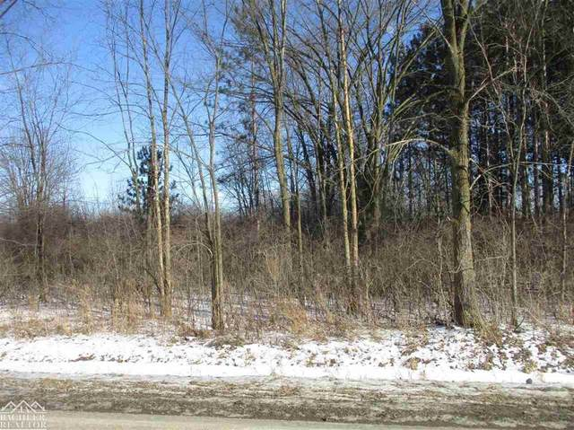 Vacant Starville, China Twp, MI 48054 (#58050033305) :: The BK Agency