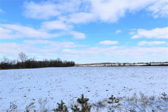 0 S Morrish Road, Clayton Twp, MI 48473 (#2210006450) :: Real Estate For A CAUSE