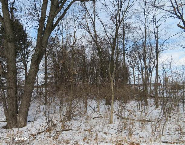 Airline Road, Sherman Twp, MI 49091 (#68021002969) :: Robert E Smith Realty