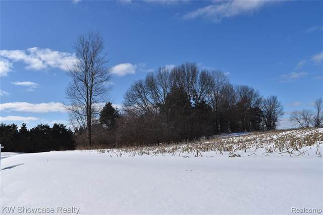 8 Clare Lane, White Lake Twp, MI 48383 (#2210006553) :: The BK Agency