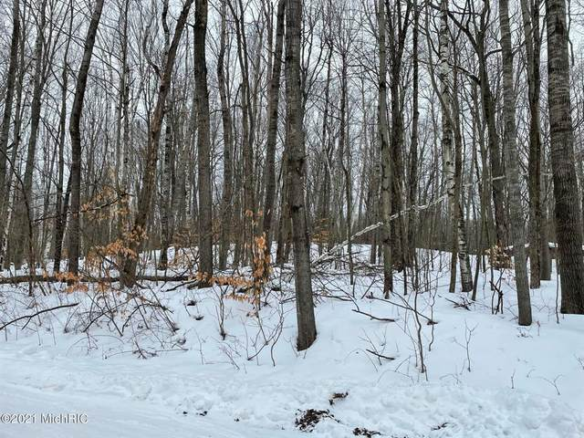 Lot #216 Lucerne Drive, Cedar Twp, MI 49677 (#65021003084) :: RE/MAX Nexus