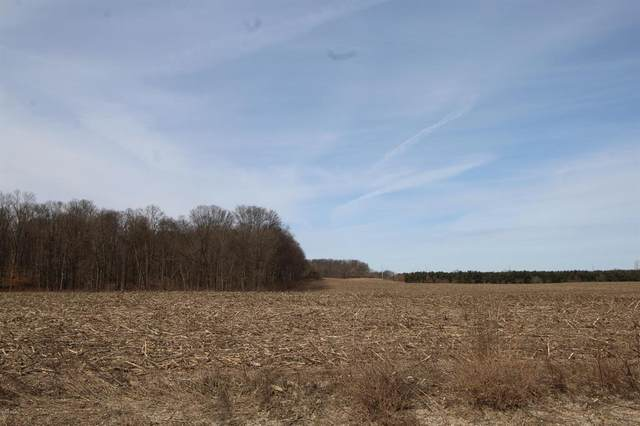 Lot 12 Old Barn Road, Carlton Twp, MI 49325 (#65021003621) :: The Alex Nugent Team | Real Estate One