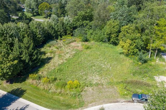115 Bridgeview Drive, Bloomfield Hills, MI 48304 (#2210008066) :: The Mulvihill Group