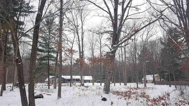 12534 Bell Road, Taymouth Twp, MI 48417 (MLS #61050033789) :: The John Wentworth Group