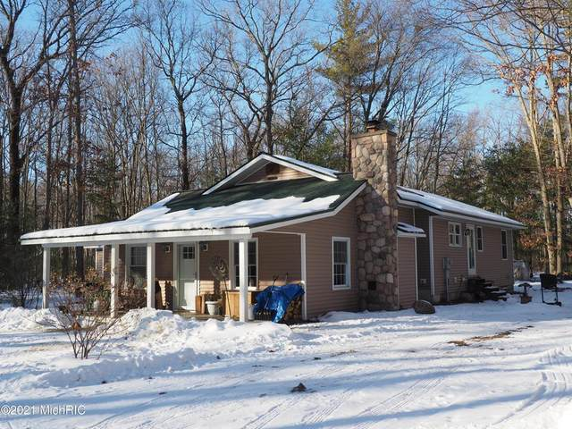 2198 Carty Road, Stronach Twp, MI 49660 (#67021003815) :: The Mulvihill Group