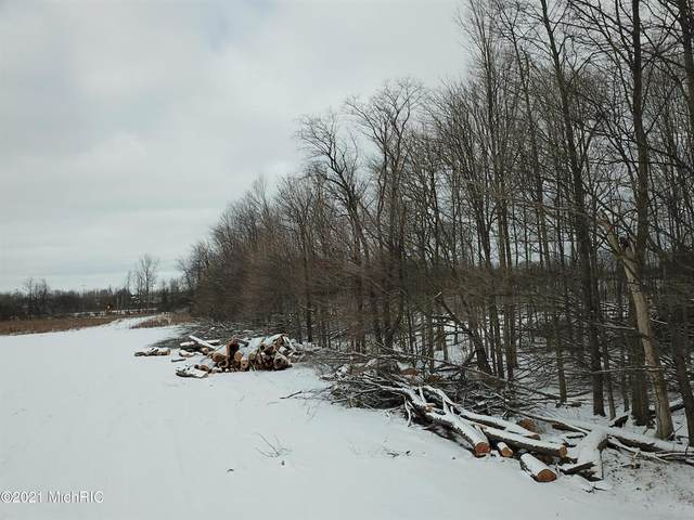4185 Shance Highway, BENTON TWP, MI 48876 (MLS #68021004053) :: The John Wentworth Group