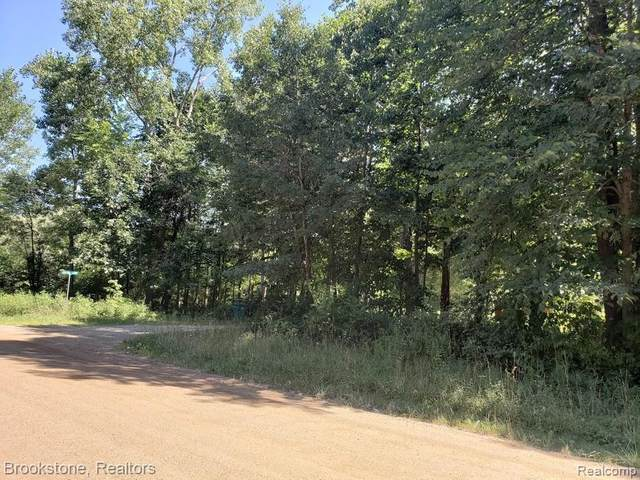 5600 Fisher Road, Oceola Twp, MI 48855 (#2210009051) :: Real Estate For A CAUSE
