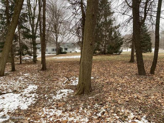 2024 Woodland Trail Trl, Cambria Twp, MI 49242 (MLS #53021004121) :: The John Wentworth Group