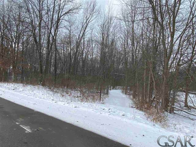 0 State Road, Antrim Twp, MI 48857 (MLS #60050034265) :: The Toth Team