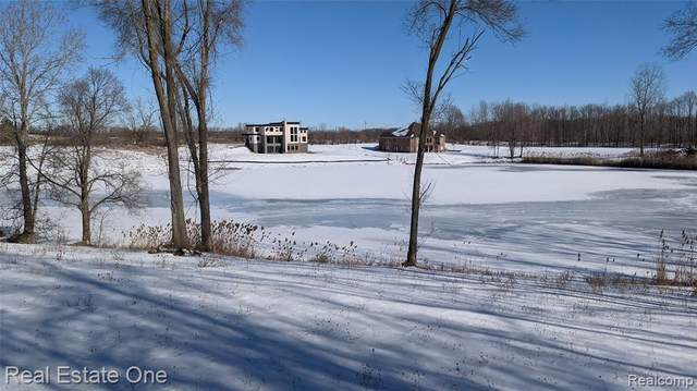 0000 Dequindre -Parcel C (4.12 Acres), Washington Twp, MI 48095 (#2210010055) :: The Merrie Johnson Team