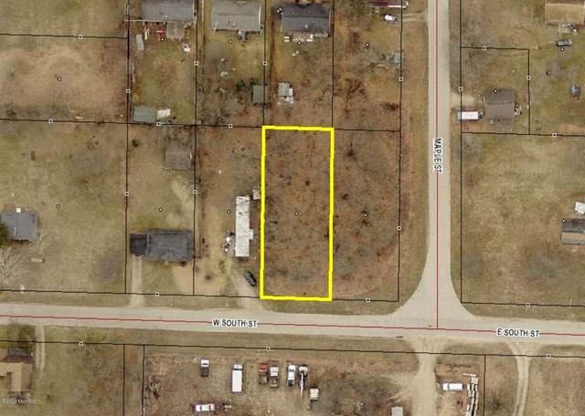 W V/L South, Lot 6 Street, Decatur Vlg, MI 49045 (#66021004822) :: RE/MAX Nexus