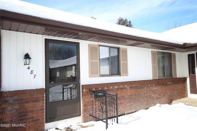 8487 Elkwood Drive SW, Byron Twp, MI 49315 (#65021004925) :: The Alex Nugent Team | Real Estate One