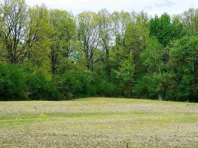 RemainderParcel Omo Rd, Richmond Twp, MI 48062 (#58050034483) :: GK Real Estate Team